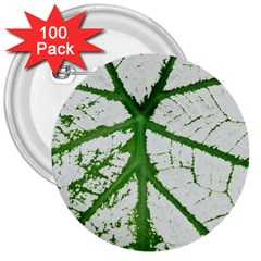 Leaf Patterns 3  Button (100 pack)