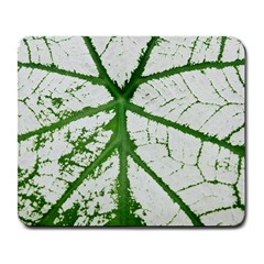 Leaf Patterns Large Mouse Pad (Rectangle)