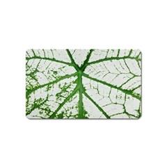 Leaf Patterns Magnet (Name Card)