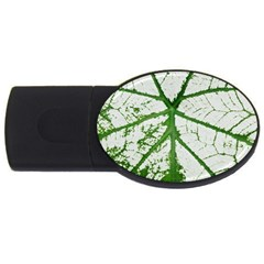 Leaf Patterns 2GB USB Flash Drive (Oval)