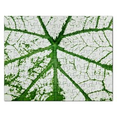 Leaf Patterns Jigsaw Puzzle (Rectangle)