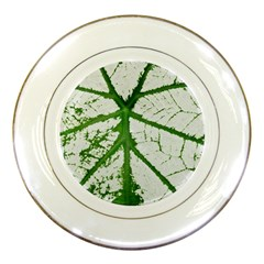 Leaf Patterns Porcelain Display Plate
