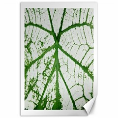 Leaf Patterns Canvas 20  X 30  (unframed)