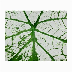 Leaf Patterns Glasses Cloth (Small, Two Sided)