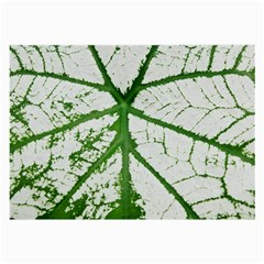 Leaf Patterns Glasses Cloth (Large, Two Sided)