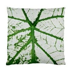 Leaf Patterns Cushion Case (one Side)
