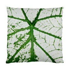 Leaf Patterns Cushion Case (Two Sides)