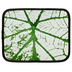 Leaf Patterns Netbook Case (xxl)