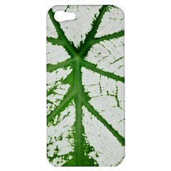 Leaf Patterns Apple iPhone 5 Hardshell Case