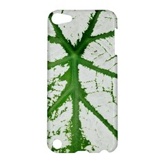 Leaf Patterns Apple iPod Touch 5 Hardshell Case