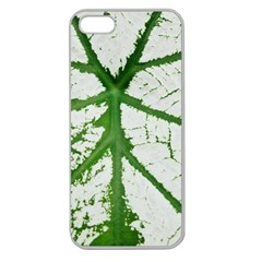 Leaf Patterns Apple Seamless iPhone 5 Case (Clear)