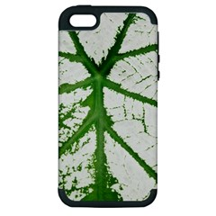 Leaf Patterns Apple iPhone 5 Hardshell Case (PC+Silicone)