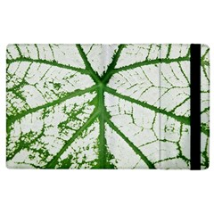 Leaf Patterns Apple Ipad 2 Flip Case