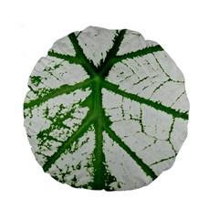Leaf Patterns 15  Premium Round Cushion