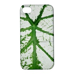 Leaf Patterns Apple iPhone 4/4S Hardshell Case with Stand