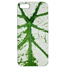 Leaf Patterns Apple iPhone 5 Hardshell Case with Stand