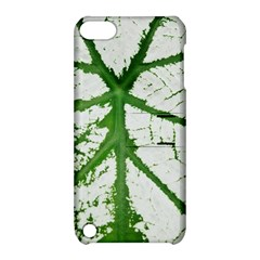 Leaf Patterns Apple iPod Touch 5 Hardshell Case with Stand
