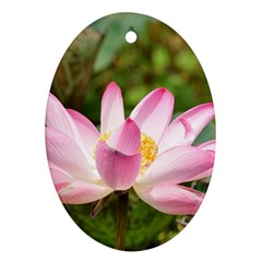 A Pink Lotus Oval Ornament