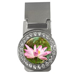 A Pink Lotus Money Clip (CZ)