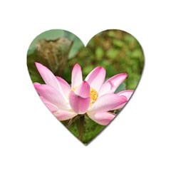 A Pink Lotus Magnet (Heart)