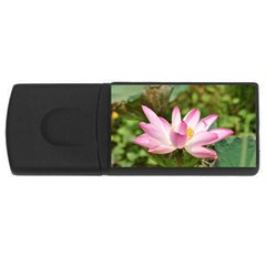 A Pink Lotus 4GB USB Flash Drive (Rectangle)