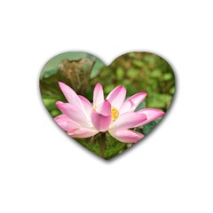 A Pink Lotus Drink Coasters 4 Pack (Heart)