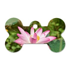 A Pink Lotus Dog Tag Bone (Two Sided)