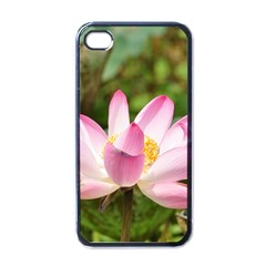 A Pink Lotus Apple iPhone 4 Case (Black)