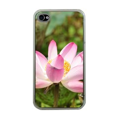 A Pink Lotus Apple iPhone 4 Case (Clear)