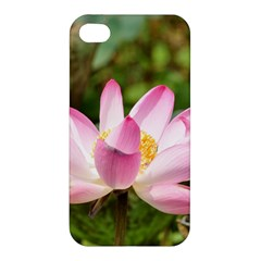 A Pink Lotus Apple Iphone 4/4s Premium Hardshell Case