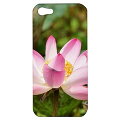 A Pink Lotus Apple Iphone 5 Hardshell Case