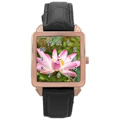 A Pink Lotus Rose Gold Leather Watch