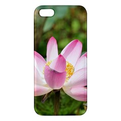 A Pink Lotus Iphone 5 Premium Hardshell Case