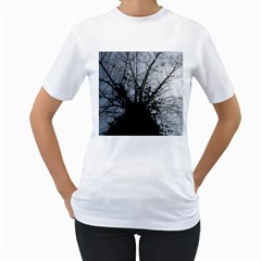 An Old Tree Womens  T-shirt (White)