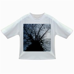 An Old Tree Baby T-shirt