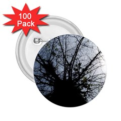 An Old Tree 2.25  Button (100 pack)