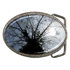 An Old Tree Belt Buckle (Oval)