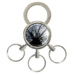 An Old Tree 3-Ring Key Chain