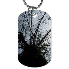 An Old Tree Dog Tag (two Sided)