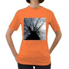 An Old Tree Womens' T Shirt (colored)