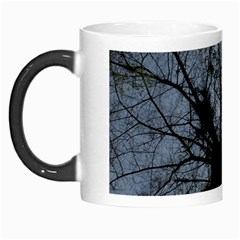 An Old Tree Morph Mug