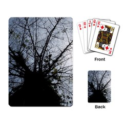 An Old Tree Playing Cards Single Design