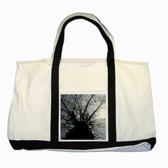 An Old Tree Two Toned Tote Bag