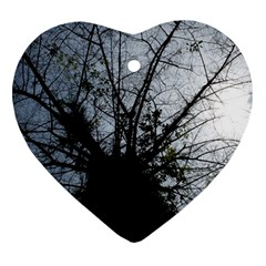 An Old Tree Heart Ornament (Two Sides)