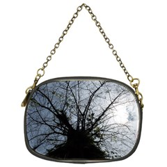 An Old Tree Chain Purse (one Side)