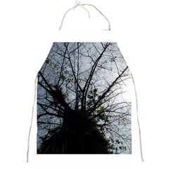 An Old Tree Apron