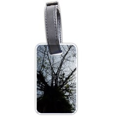 An Old Tree Luggage Tag (one Side)