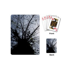 An Old Tree Playing Cards (Mini)