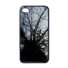 An Old Tree Apple iPhone 4 Case (Black)