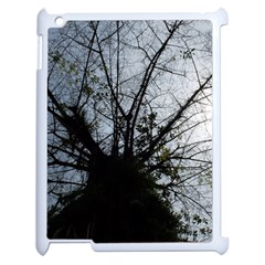 An Old Tree Apple iPad 2 Case (White)